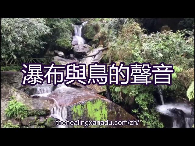 療愈聲音-大自然聲音-音之療法-净化-冥想音樂-冥想背景音樂-瀑布聲音-鳥聲