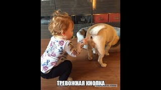 АНЕКДОТ ПРО ФОКУСНИКА