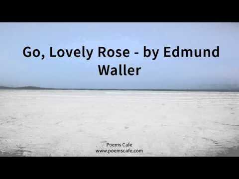 Go, Lovely Rose   by Edmund Waller