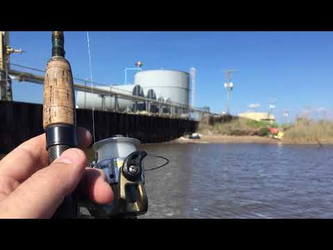 Louisiana Fishing with Cleo Mclean
