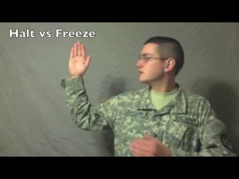 hand and arm signals youtube
