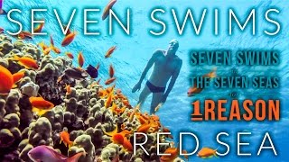 Lewis Pugh - Seven Swims; Red Sea