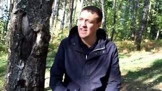 Вячеслав Антонов. Мечта.
