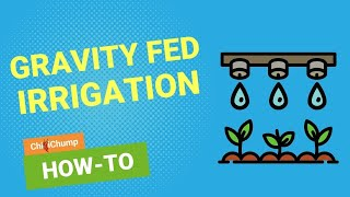 DIY Gravity Fed Drip Irrigation System for my Chilli Pepper Plants