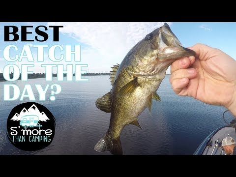 Fishing In Lake Arbuckle - Avon Park Florida