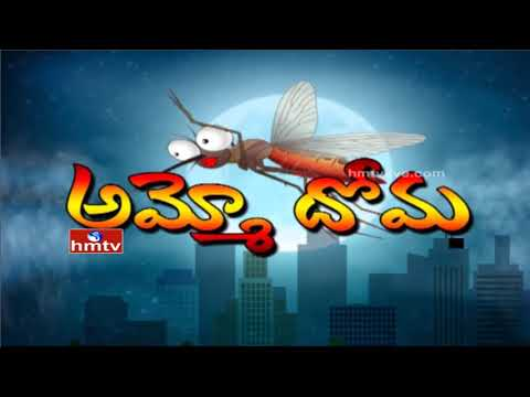 Mosquito Menace | Special Focus On Mosquito Borne Diseases In Monsoon Season | HMTV