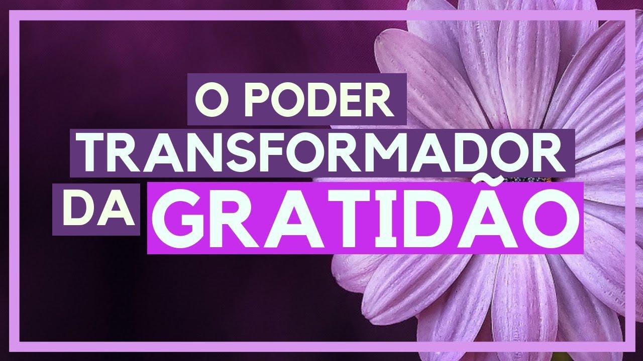 O PODER TRANSFORMADOR DA GRATIDÃO - YouTube