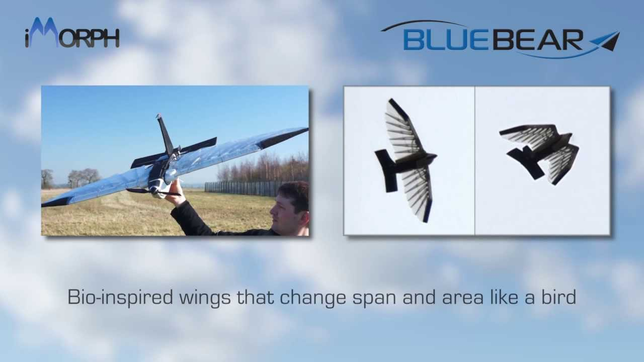 bio inspired morphing of uav wings Key words: bio-inspired, morphing piezoelectric, shape change, review introduction t rotary-wing uav to fly using adaptive materials for all flight control, gamara, was flown in 1996 (barrett et al, 1998.