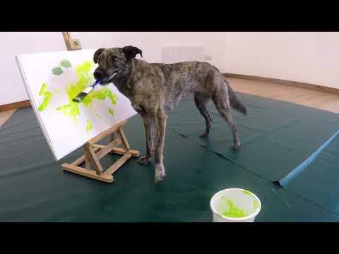Paintbrush painting (no bucket) - advanced trick