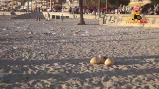 Müllkippe am Strand von Mallorca  - Tag 2