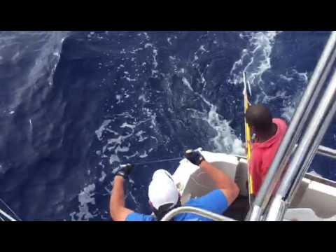 Fishing In Mauritius With Elite-Voyage