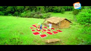 Chenthaamarathero... | 916 | Malayalam Movie Video Song