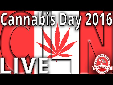 CLN Live at the Vancouver Art Gallery, Cannabis Day 2016