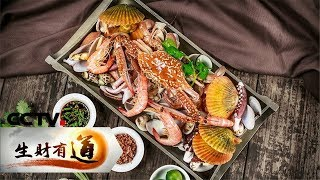 《生财有道》 20190502 咱们家乡春天美 海韵!海味!嗨,三门!| CCTV财经