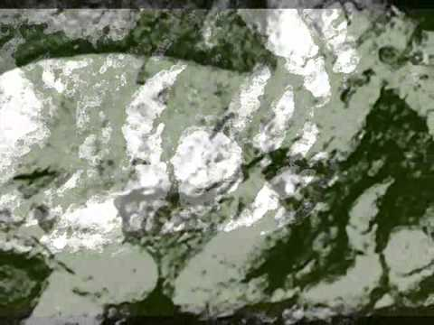 Île de Pâques - Le rite de l'Homme-oiseau poster
