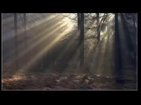 Serhan Korhan - Değmeyin mp3 indir