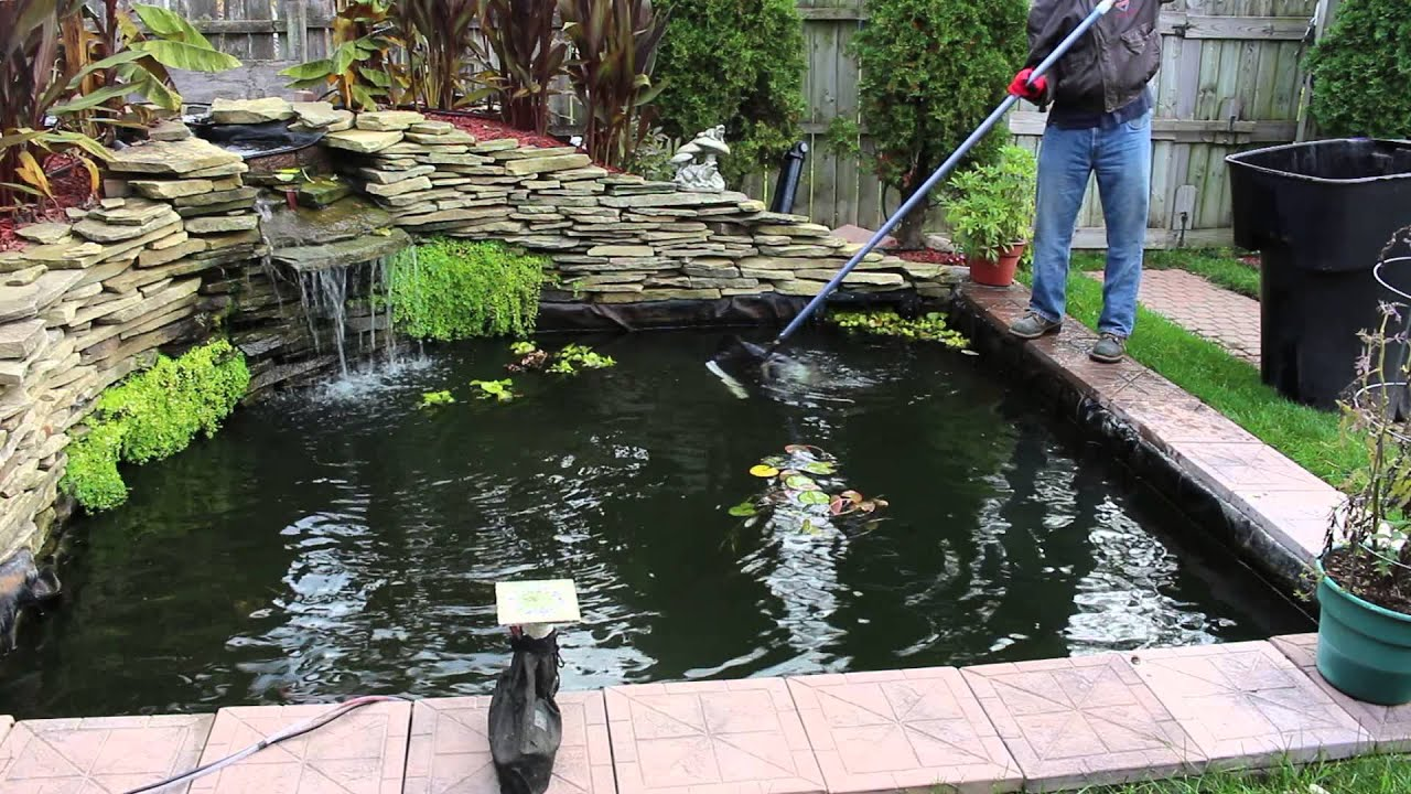 Cleaning preparing the koi pond for winter 2015 youtube for The koi pool