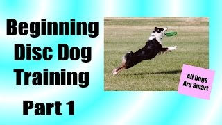 How Teach Your Dog To Play Frisbee From Scratch Part 1