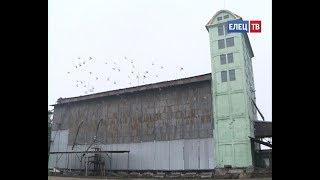 Елецкий район элеваторы фольксваген транспортер т2 в белоруссии