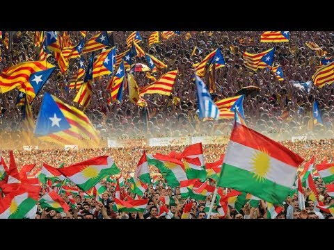 Nationalism Winning: The Globalist Media Are Starting to Panic!!!