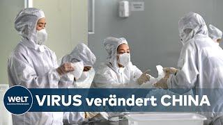 WELT INTERVIEW: Coronavirus - Wie Covid-19 das Leben in China verändert