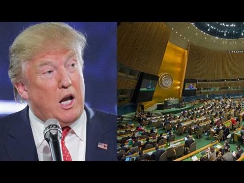 US Allies Are Investigating Trump