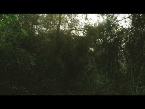 Fin y principio - Agustín Brocal