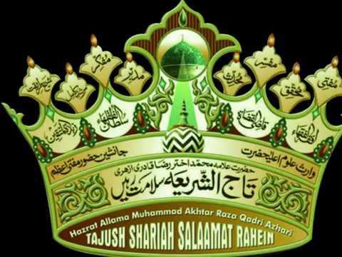 Allama Maulana Idrees Raza Khan Hashmati