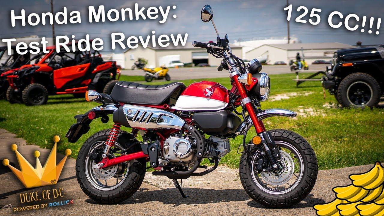 2020 Honda Rebel Top Speed.2019 Honda Monkey Review And Test Drive Gorollick