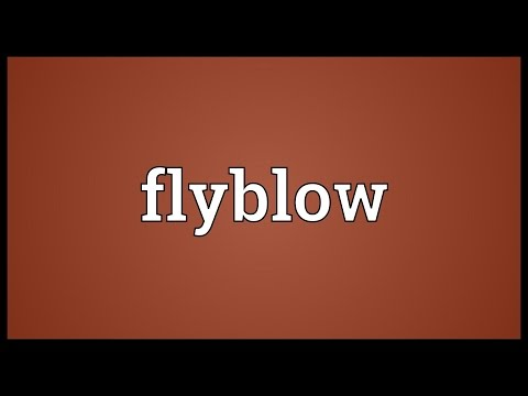 Header of flyblow