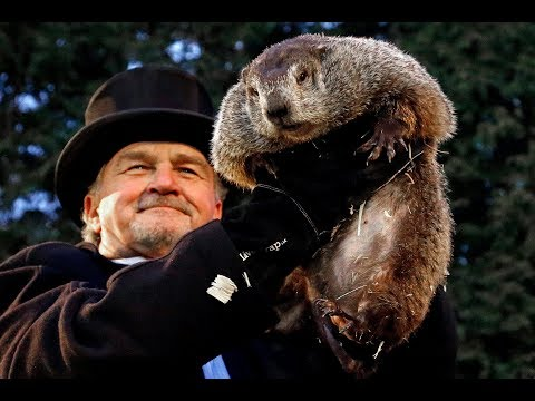 Groundhog Day: Full coverage of Punxsutawney Phil's 2018 pre