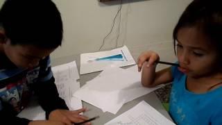 Concentración en niños y niñas 28 Crucigrama de animales acuáticos