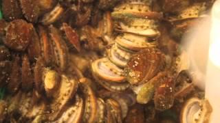 富基漁港海鮮樂