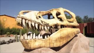 Visita al Reino Animal Teotihuacán México *Luis Miguel: La Jirafa