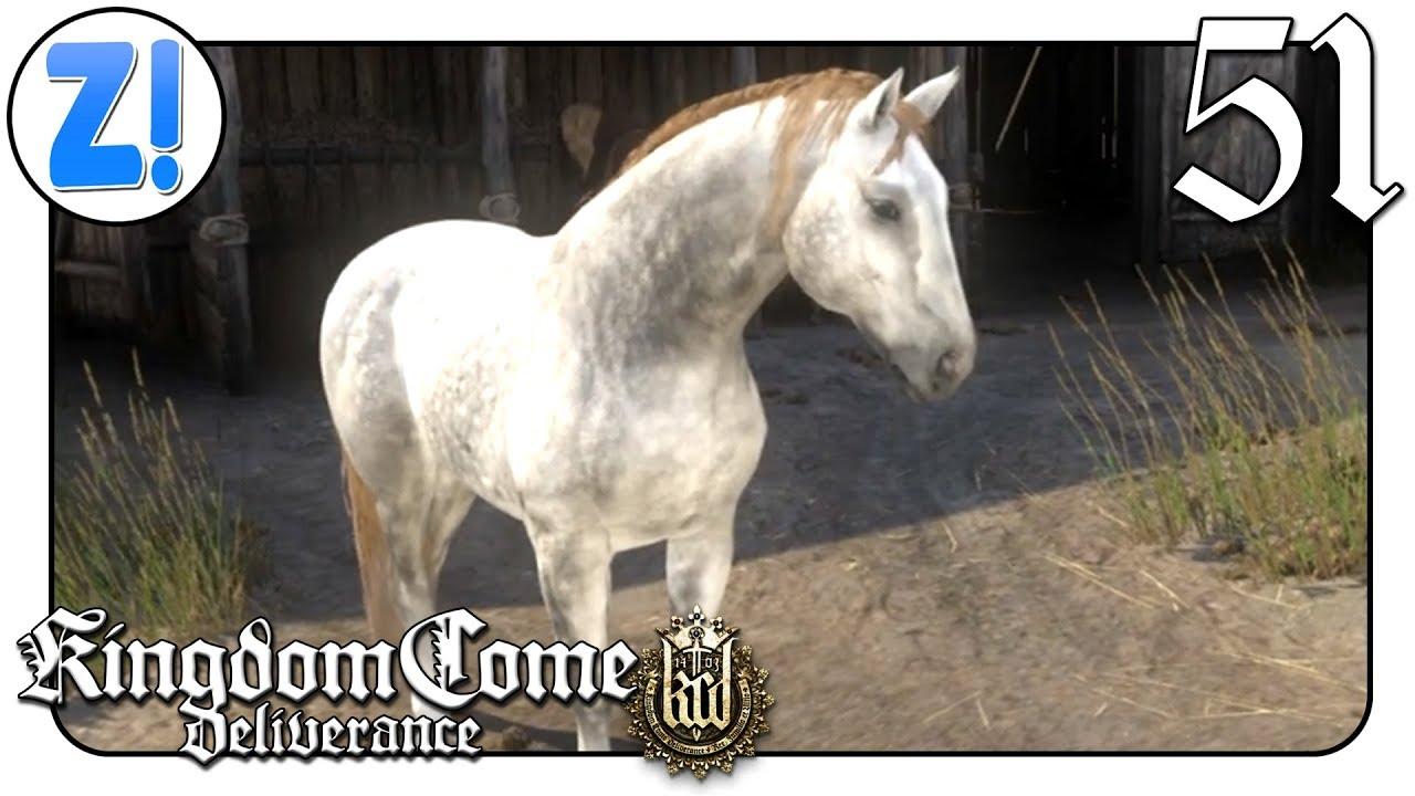 Kingdom Come Pferd Kaufen