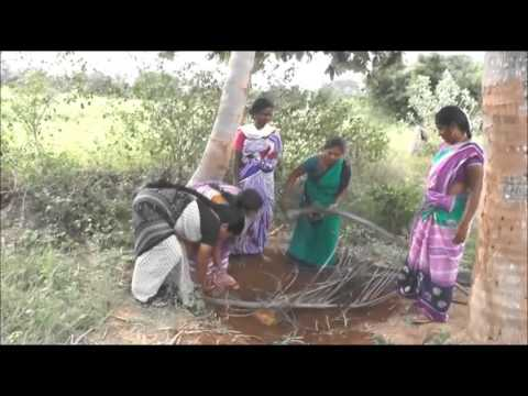 Neem Bark And Vitex Extract Preparation And Its Uses_Chittoor_SERP-CMSA And Digital Green,A.P