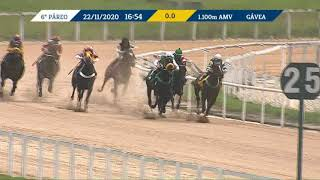 Vidéo de la course PMU QUIP MASK