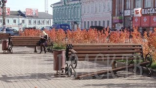 видео Богородск