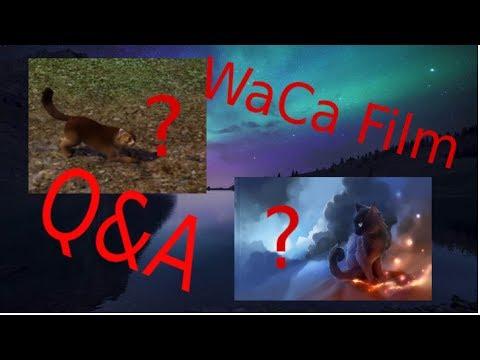 Warrior Cats Weitere Infos zum WaCa Film und Abbo special ?!