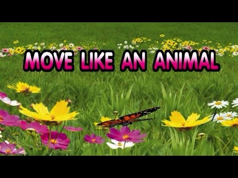 MOVIE LIKE AN ANIMAL [Official Karaoke]