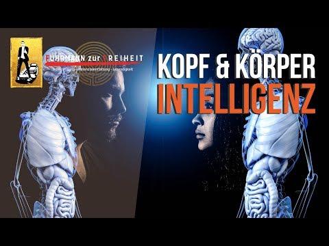Kopf & Körper-Intelligenz | Das alte & neue Paradigma - Integrative Selbstregulation