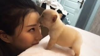 Cute is Not Enough - Funny Cats and Dogs Compilation #182
