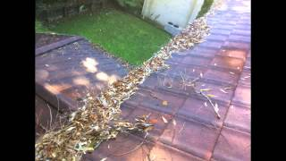 Gutter Cleaning Cherrybrook