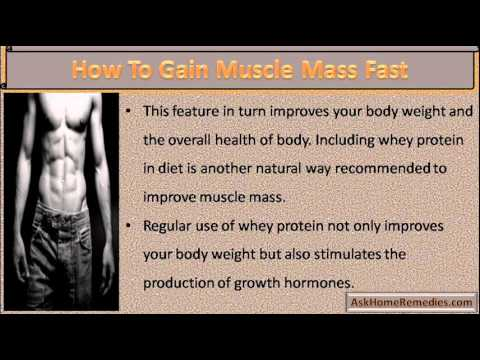 how to add muscle mass fast