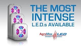 Best Led Grow Lights Agromax Intensity Series - The Most Intense L.e.d.'s Available