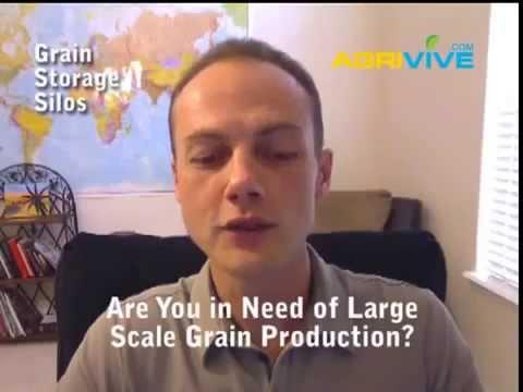 Export Company, United States Bulk Grains Wholesale Food Exporters, Wholesale Grains Exporters