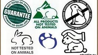 О тестировании косметики на животных - ЗАПРОС
