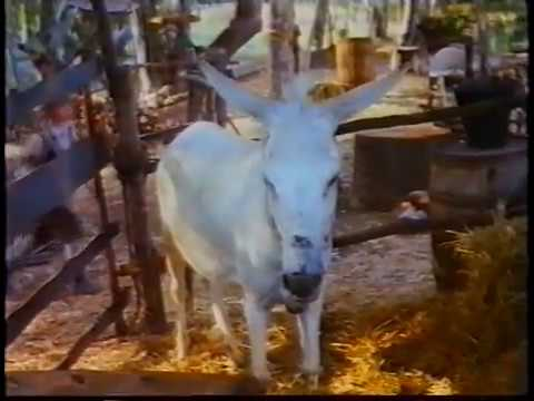 Hansel Gretel 1987 In Italiano Youtube