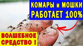 Супер Средство от Комаров Своими Руками | Полезные советы для жизни