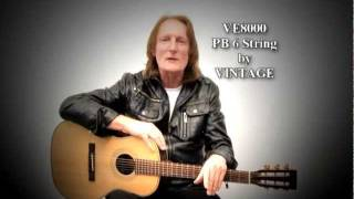 Official Promo - New Paul Brett Signature VE8000PB6 6 string electro acoustic guitar by Vintage